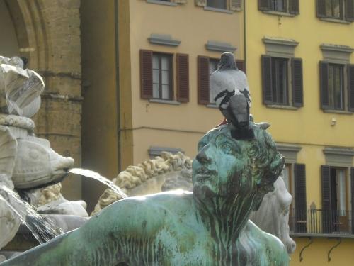 Mal bist du Taube, mal Denkmal, aufgenommen in Florenz, Italien, 2012