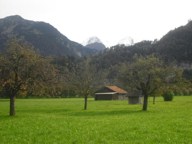 Blick auf Eiger, Mönch und Jungrau, Interlaken (Schweiz), Oktober 2014